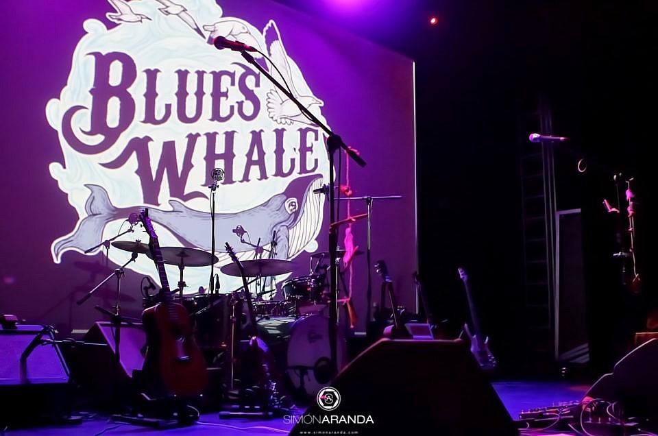 """Blues Whale presentación """"Fours Birds"""""""